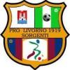 Calcio Dilettanti: Pro Livorno Sorgenti si presenta. Quadri dirigenziali ed interviste